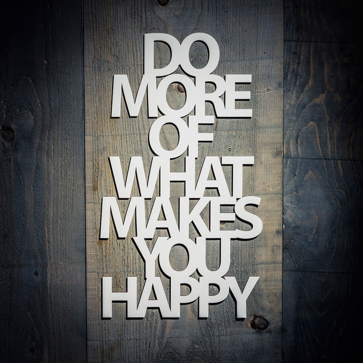 do_more_of_what_makes_you_happy_4